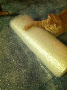 Muse claws bubble wrap