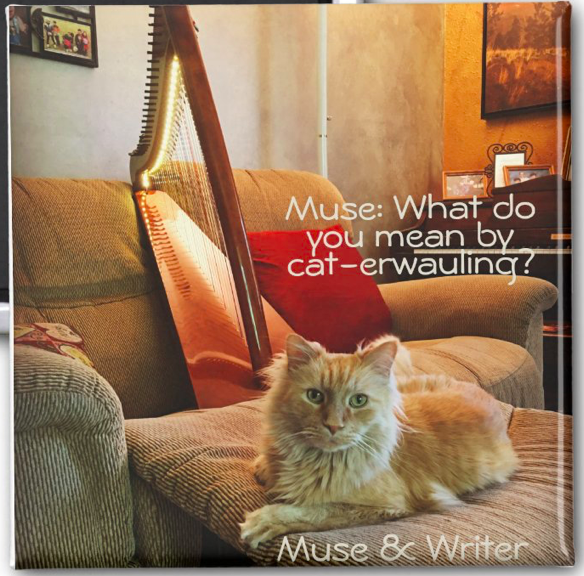 An A-Muse-ing Cat-erwauling Magnet